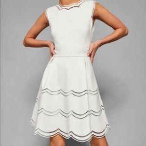 BNWT Ted Baker Dress